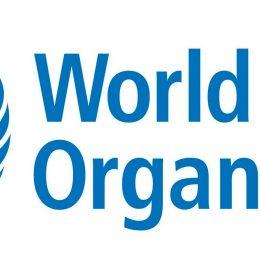 Betere zorg voor transgender personen wereldwijd: WHO haalt genderdysforie van de lijst geestesziekten
